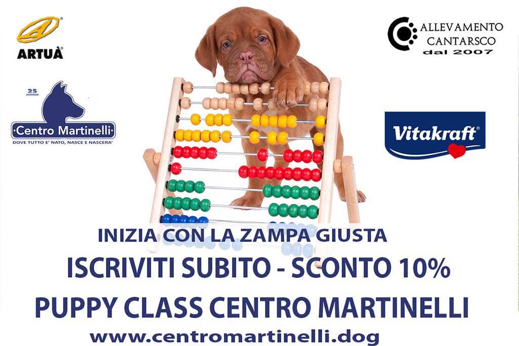 PUPPY CENTRO MARTINELLI