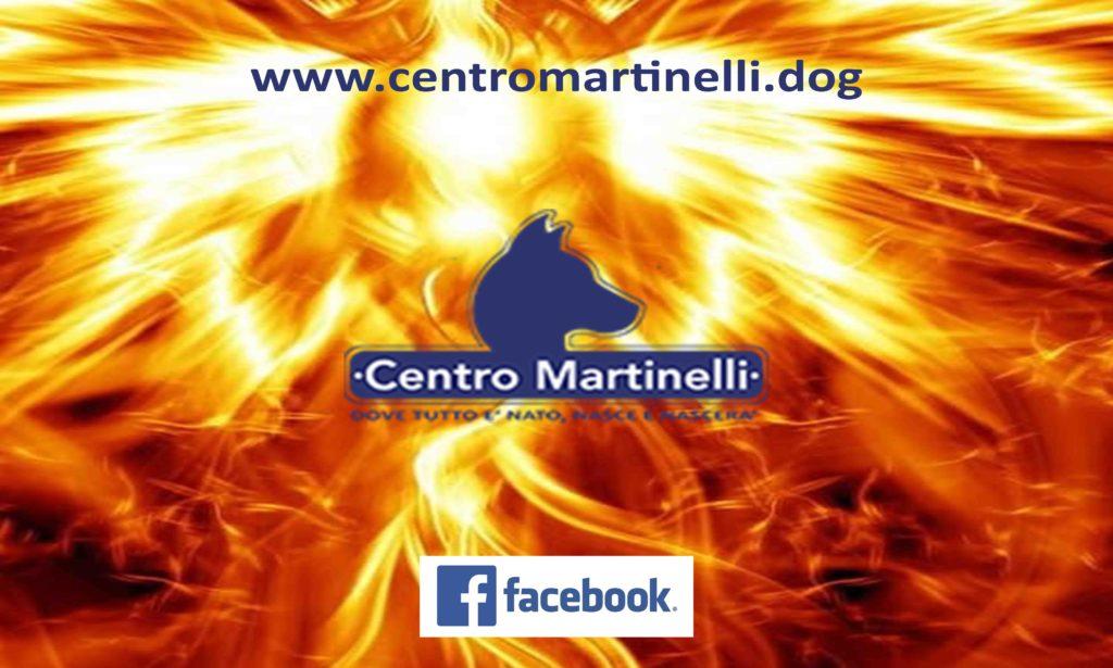 Facebook CentroMartinelli
